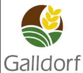 Galldorf